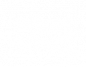 What The Frog